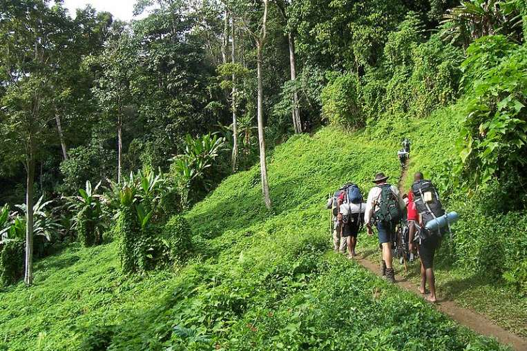 attraction-Kep Trekking Jungles.jpg