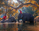 Cambodia Private Tours | 5-Day Kanchanaburi & Pattaya Tour